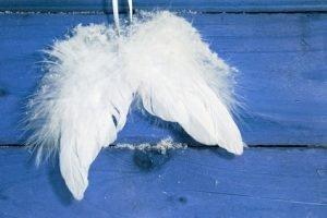 ma-toute-nouvelle-paire-d-ailes
