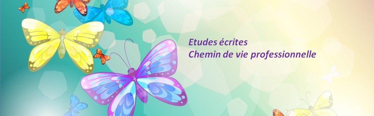 etudes-ecrites-chemin-de-vie-professionnelle-mademoiselle-bien-etre-1