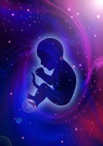 comprendre-le-processus-d-incarnation