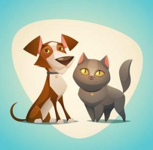 soins-energetiques-pour-animaux