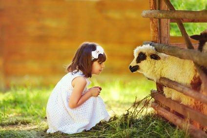 parler-aux-animaux