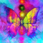 papillon-mademoiselle-bien-etre