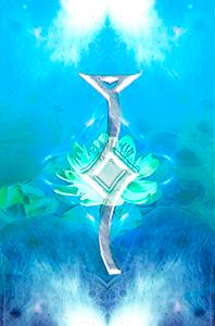 lotus-harmoniques