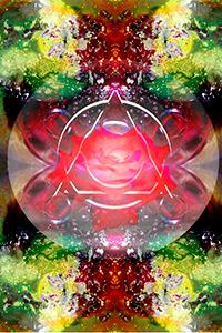 rose-mystique-harmoniques