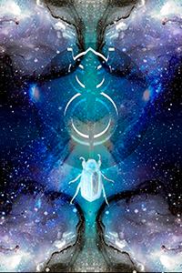scarabee-harmoniques