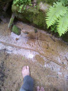 marcher-pieds-nus-dans-la-nature